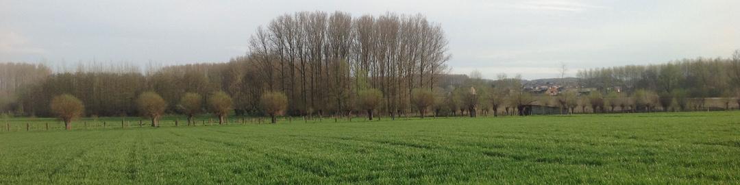 Header N-VA Sint-Lievens-Houtem